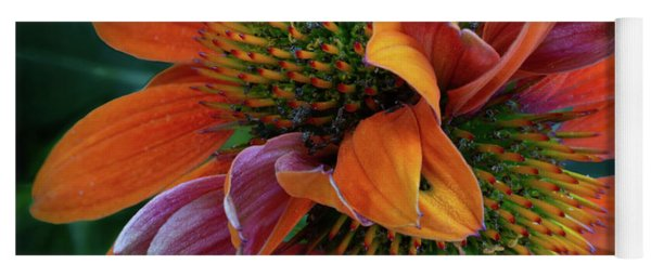 Yoga Mat featuring the photograph Double Coneflower by Dale Kincaid