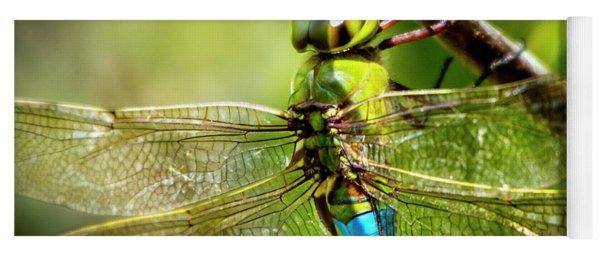 Dragonfly Closeup Yoga Mat