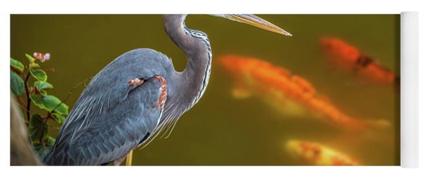 Yoga Mat featuring the photograph Dreaming Tricolor Heron by Francisco Gomez
