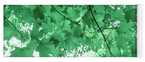 Dreams Of Summer In Paolo Veronese Green Yoga Mat