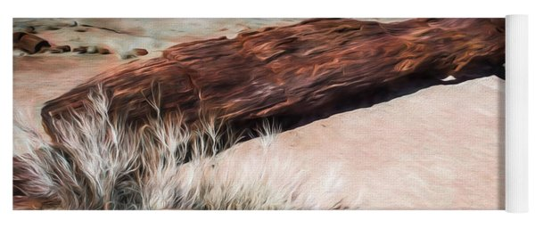 Yoga Mat featuring the photograph D R T In Arizona by Jon Burch Photography
