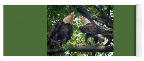 Eagle Pair  Yoga Mat