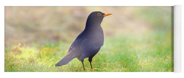 Early Bird Yoga Mat