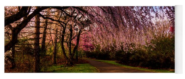 Early Morning Cherry Blossoms Yoga Mat