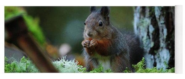 Eating Squirrel Yoga Mat