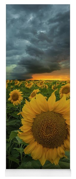 Yoga Mat featuring the photograph Eccentric  by Aaron J Groen