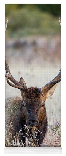 Elk Portrait Yoga Mat