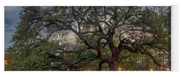 Emancipation Oak At Dusk Yoga Mat