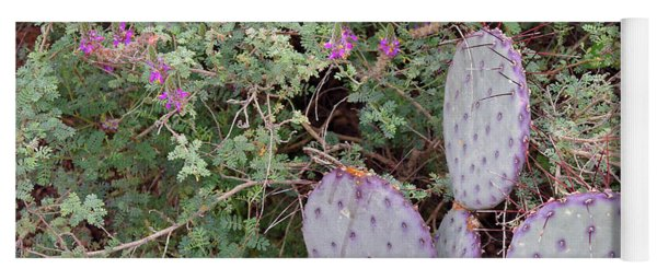 Yoga Mat featuring the photograph Ensconced Prickly Pear 5 by Lynda Lehmann