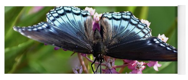 Eye Level With A Red-spotted Purple Yoga Mat