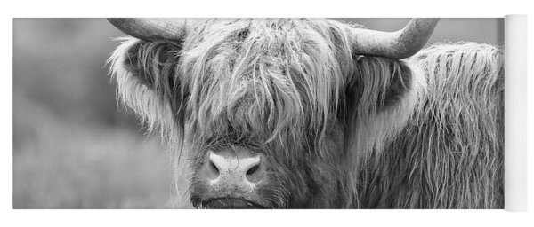 Face-to-face With A Highland Cow - Black And White Yoga Mat