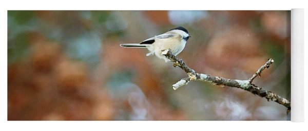 Yoga Mat featuring the photograph Fall Chickadee by Sue Collura