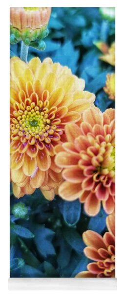 Yoga Mat featuring the photograph Fall Chrysanthemums Autumn Orange Peach by Rachel Hannah