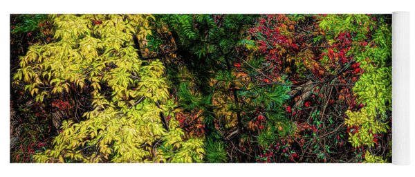 Yoga Mat featuring the photograph Fall Color Along The Big Tom by Jon Burch Photography