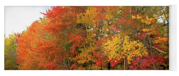 Yoga Mat featuring the photograph Fall Colors by Doug Camara