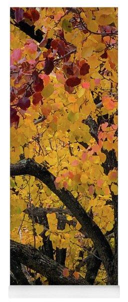 Fall In Carlyle Yoga Mat