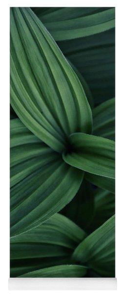 False Hellebore Plant Abstract Yoga Mat