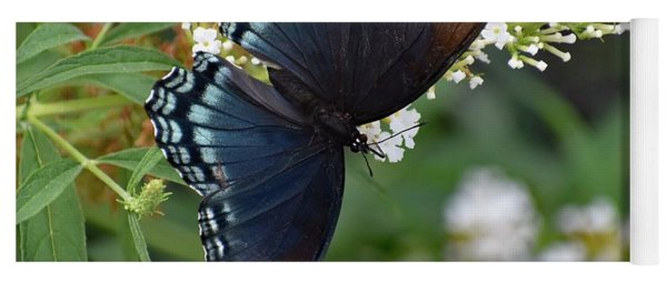Fascinating Red-spotted Purple Yoga Mat