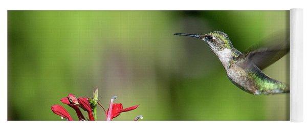 Female Ruby-throated Hummingbird Dsb0320 Yoga Mat