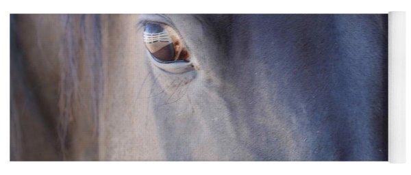 Fenced Foal Yoga Mat