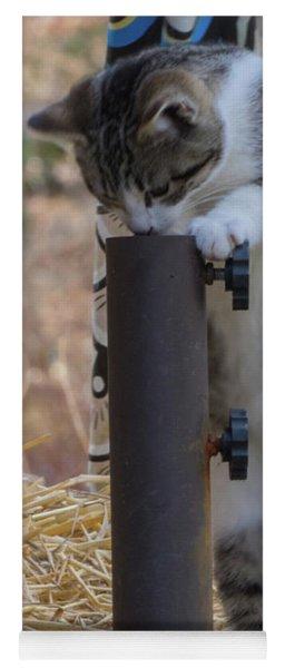 Feral Kitten Yoga Mat