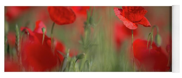 Field Of Wild Red Poppies Yoga Mat