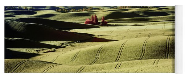 Fields In The Palouse Yoga Mat