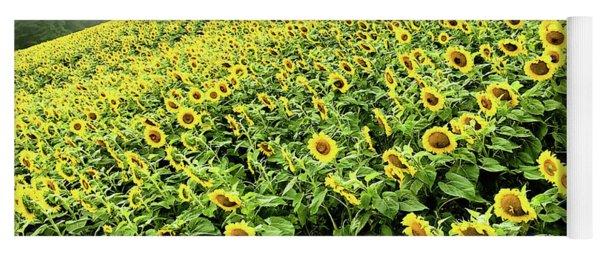 Fields Of Yellow Yoga Mat