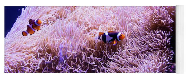 Finding Nemo The Clownfish R1348 Yoga Mat