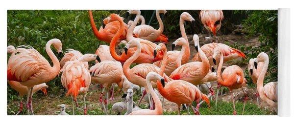 Flamingos Outdoors Yoga Mat