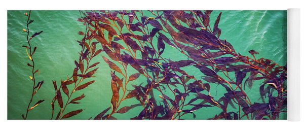 Floatin Kelp I Color Yoga Mat