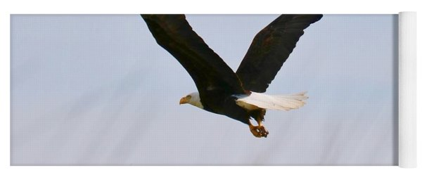 Flying Bald Eagle At Beach Yoga Mat