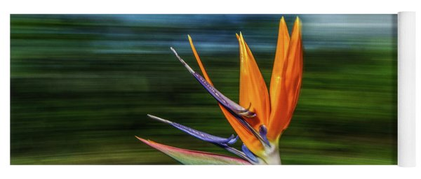 Flying Bird Of Paradise Yoga Mat