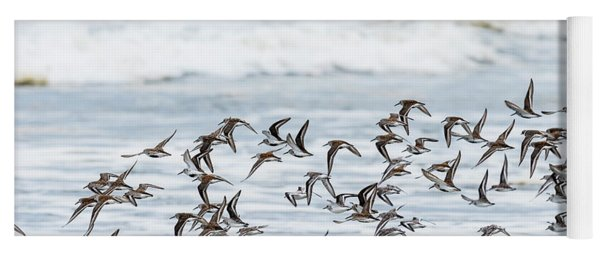Flying Flock Of Shorebirds Yoga Mat