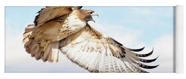 Flying Red-tailed Hawk Yoga Mat
