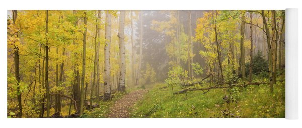 Foggy Winsor Trail Aspens In Autumn 2 - Santa Fe National Forest New Mexico Yoga Mat