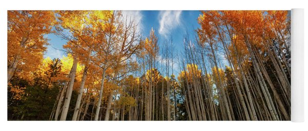 Yoga Mat featuring the photograph Follow The Yellow Leaf Road by Rick Furmanek