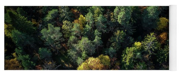 Forest Landscape - Aerial Photography Yoga Mat
