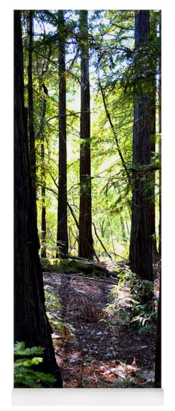 Forest Mystery - Big Sur Yoga Mat
