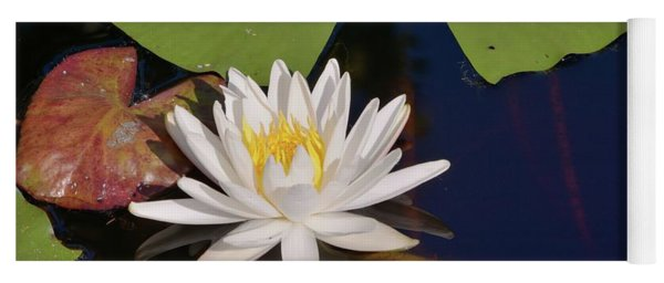 Fragrant Water Lily Yoga Mat