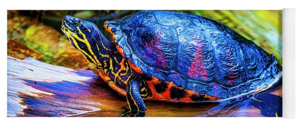 Freshwater Aquatic Turtle Yoga Mat