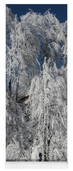 Frosted Trees Yoga Mat