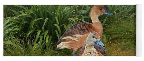 Fulvous Whistling Ducks  Yoga Mat