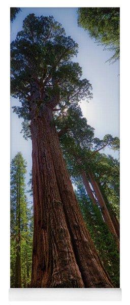 Giant Sequoia Tree Yoga Mat