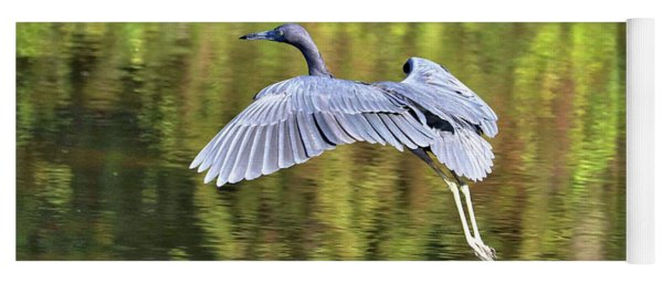 Gliding Little Blue Heron Yoga Mat