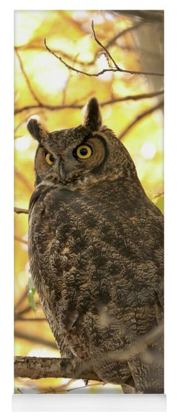 Glowing Great Horned Owl In Yellow Yoga Mat