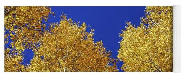 Golden Aspens And Blue Skies Yoga Mat