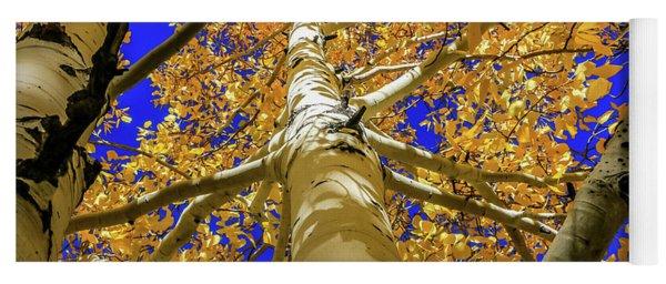 Golden Aspens In Grand Canyon Yoga Mat