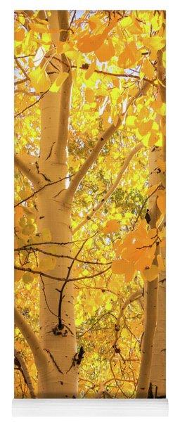 Golden Aspens In Grand Canyon, Vertical Yoga Mat