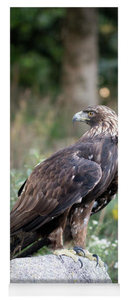 Golden Eagle On Rock 92515 Yoga Mat